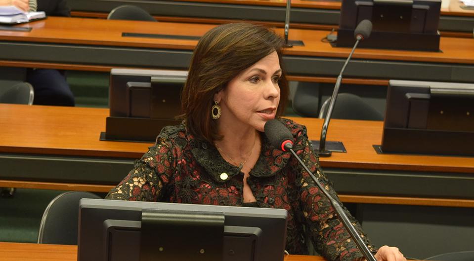 Deputada Dorinha integra quatro comissões permanentes na Câmara