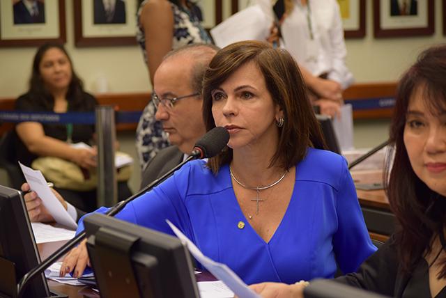 Relator acata seis emendas da deputada Professora Dorinha na MP do Ensino Médio
