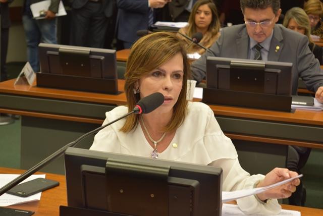 Projeto da deputada Dorinha suspende o reajuste de energia elétrica no Tocantins