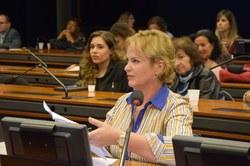Ana Perugini propõe que misoginia seja tratada como crime de ódio