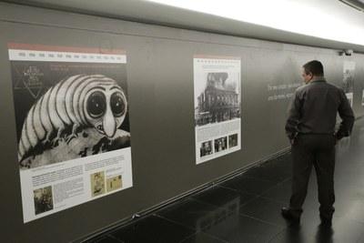 Shoá — o Holocausto: como foi humanamente possível?