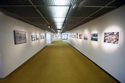 Exposição Quadrantes - Foto: Victor Diniz / Câmara dos Deputados