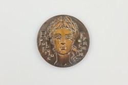 Medalha comemorativa da República Francesa