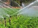 Comissão discute descontos em tarifas de energia usada para irrigação rural