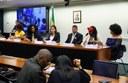 Em debate na Comissão de Cultura, ativistas pedem mais negros nas universidades