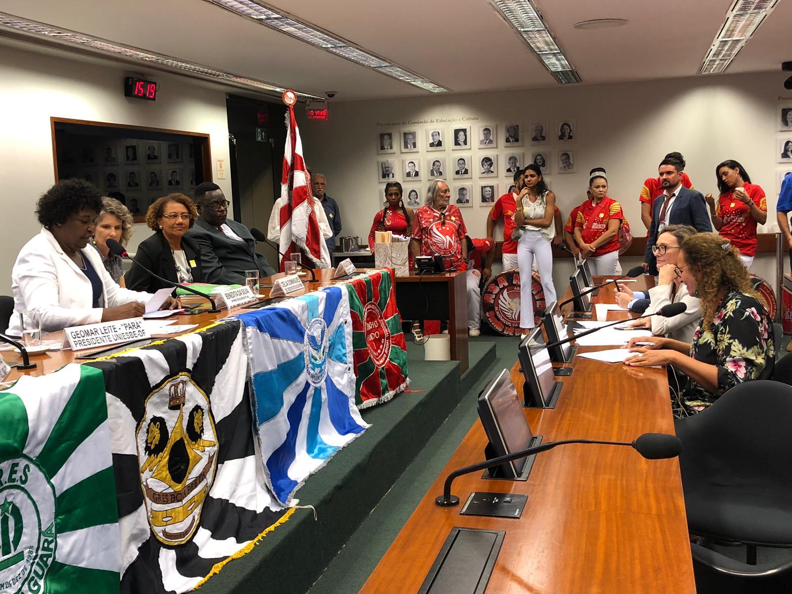 Em reunião Deliberativa Ordinária, a CCult aprova quatro requerimentos e dois PL