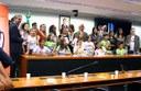Audiência da CDHM debate proteção de Crianças e Adolescentes em situação de Violência Sexual