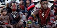 CDHM e Parlamento Europeu fazem missão conjunta ao MS para apurar violações de DH dos Guarani-Kaiowá