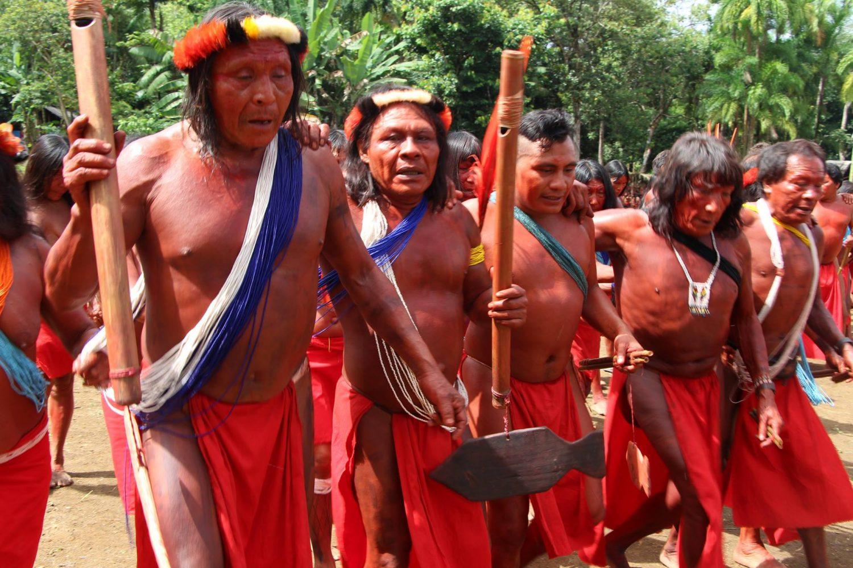 CDHM faz diligência ao Amapá para apurar assassinato e invasão de terras indígenas