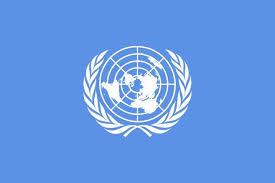 Missão da Câmara vai à ONU apresentar relatório crítico à versão oficial do governo brasileiro sobre violações de Direitos Humanos