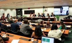 2019 na CDHM : Sociedade e parlamentares unem-se em defesa da segurança humana