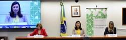 Audiência Pública, dia 21/11/19, sobre o tema: Atendimento Educacional Especializado - AEE