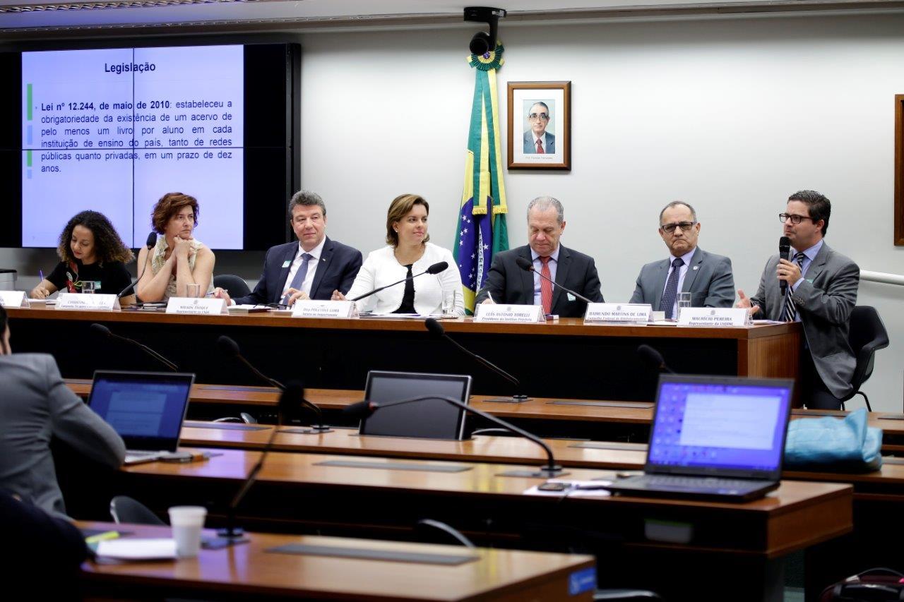 Brasil pode não atingir meta prevista na Lei das Bibliotecas