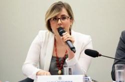 Dados sobre a Educação Básica no Brasil