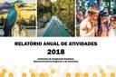 Relatório Anual de Atividades da Comissão de Integração Nacional já está disponível