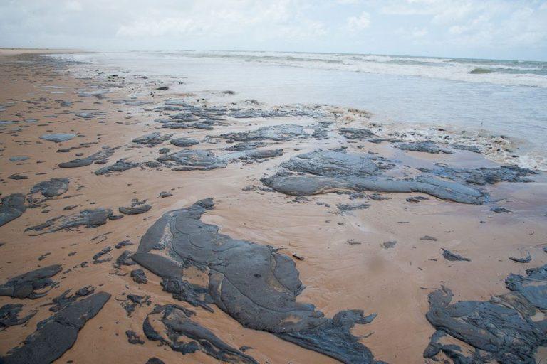 Salles vem à Câmara para falar sobre vazamento de óleo no litoral nordestino