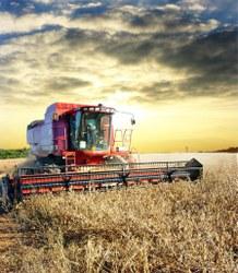 Aspecto econômico das culturas agrícolas geneticamente modificadas será debatido na CMADS