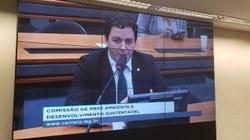 Célio Studart é eleito presidente da Subcomissão em Defesa dos Direitos dos Animais