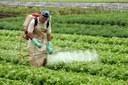 CMADS fará discussão sobre os efeitos dos agrotóxicos na saúde e no meio ambiente.