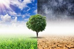 CMADS fará Seminário Nacional de Governo, Clima, Florestas e Agricultura