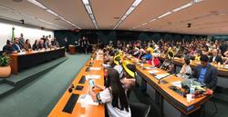 Comissão promove audiência sobre papel dos povos indígenas na proteção ambiental