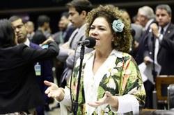 CREDN irá acompanhar agenda do BRICS e sua cúpula no Brasil