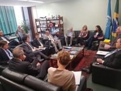 Grupo Parlamentar Brasil – Alemanha discute agenda bilateral com parlamentar alemã