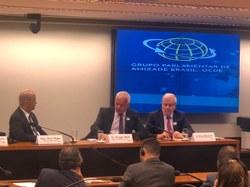 Grupo Parlamentar de Amizade Brasil-OCDE recebeu representantes do Grupo de Trabalho da OCDE sobre Suborno