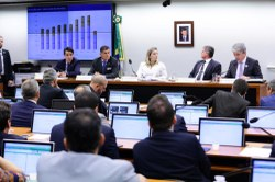 Confira como foi a Reunião Deliberativa  Ordinária e a Audiência Pública realizadas nesta quarta-feira, 24/04, pela CSPCCO.