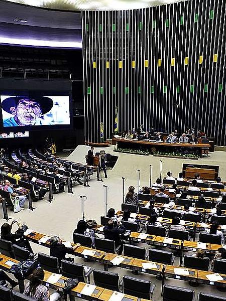 Código Florestal é alvo de críticas em sessão solene na Câmara