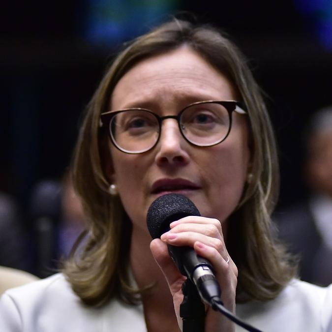 Sessão Extraordinária da Câmara dos Deputados - Deputada Maria do Rosário - PT-RS