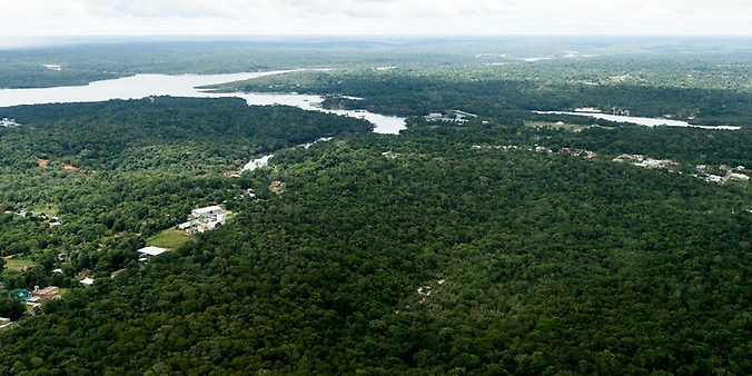 Meio Ambiente - bioma - Amazônia