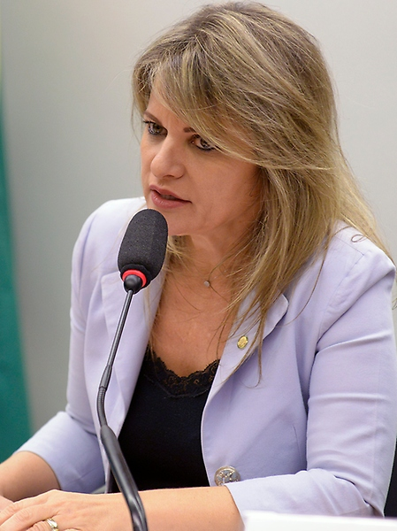 Seminário sobre a inclusão da economia do cuidado e o trabalho não remunerado realizado no interior dos domicílios, no Sistema de Contas Nacionais. Dep. Flávia Morais (PDT - GO)