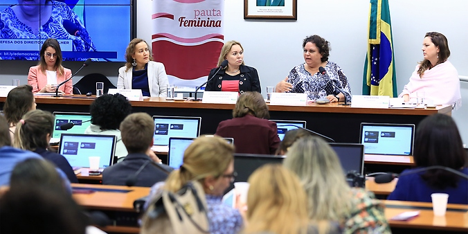 Audiência pública sobre Mulheres, Violências e Mídias Sociais: como prevenir e combater crimes de ódio contra as mulheres na internet