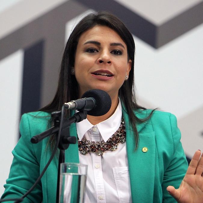 Seminário Internacional – Governança e Democracia: um caminho para o desenvolvimento. Dep. Mariana Carvalho (PSDB - RO)
