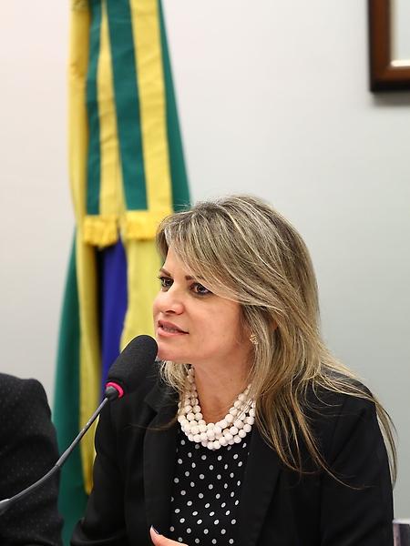 Seminário Desafios para a Reindustrialização Nacional . Dep.Flávia Morais(PDT - GO)