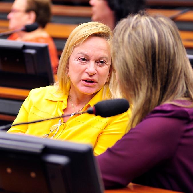 Reunião para eleição da Coordenadora-Geral dos Direitos da Mulher na Câmara. Dep. Magda Mofatto (PR-GO)