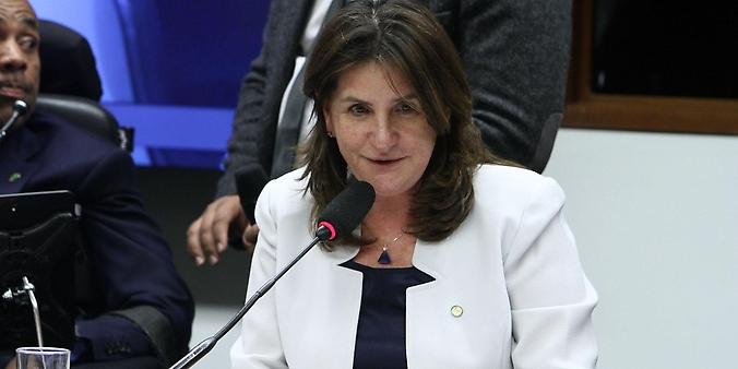 Reunião Extraordinária. Dep. Carmen Zanotto (PPS - SC)
