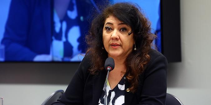 Audiência pública sobre assuntos relacionados a RECALL. Dep. Christiane de Souza Yared(PR - PR)