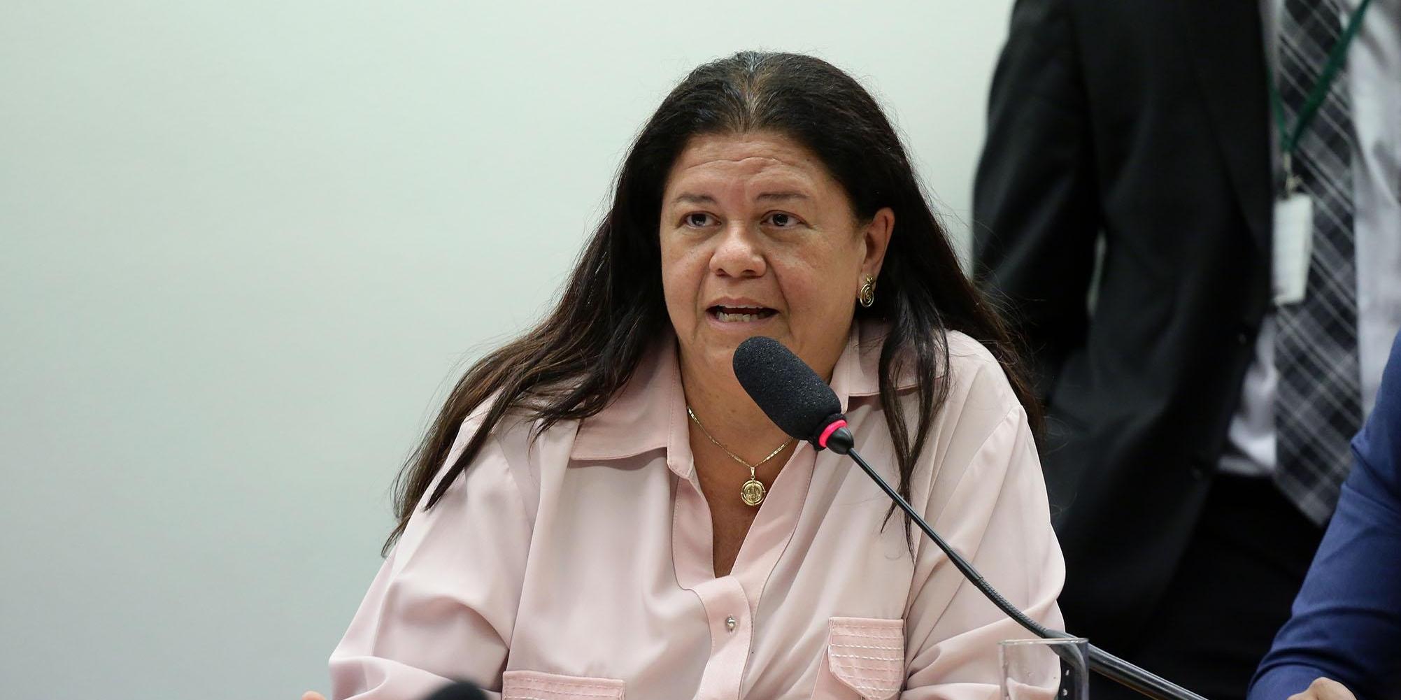 Audiência Pública com a participação de técnicos do Tribunal de Contas da União - TCU e do Observatório Legislativo da Intervenção Federal na Segurança Pública do Estado do Rio de Janeiro. Dep. Laura Carneiro( DEM - RJ)