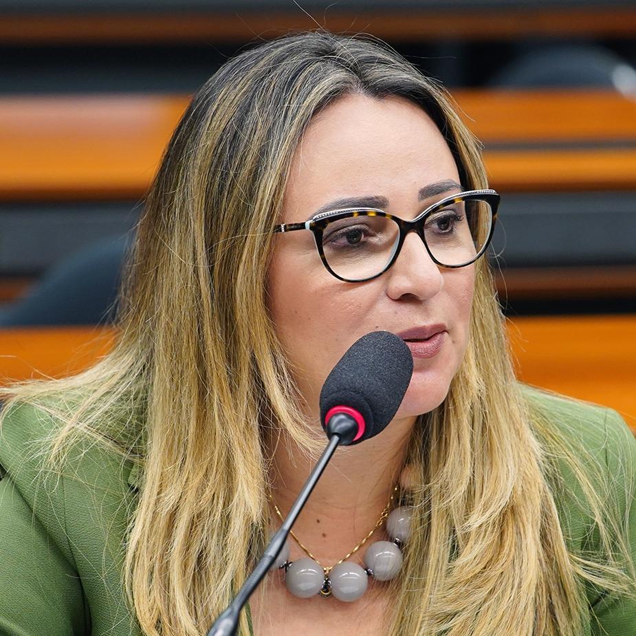 Seminário sobre Educação Integral. Dep. Rejane Dias (PT - PI)