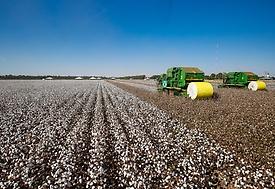 Comissão externa apresenta projetos para renegociar dívidas de produtores